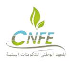 logo_cnfe-removebg-preview